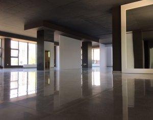 Espace Commercial à vendre dans Cluj Napoca, zone Zorilor