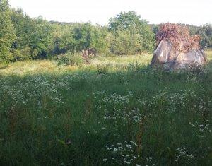 Teren de vanzare, toate utilitatile, Faget, Cluj-Napoca