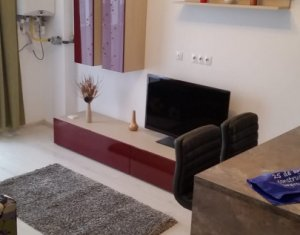 Apartment 2 rooms for rent in Cluj-napoca, zone Centru
