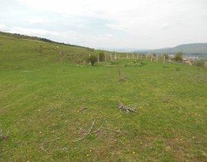 Vanzare teren intravilan 610 mp, 2 fronturi, zona Vivo Center