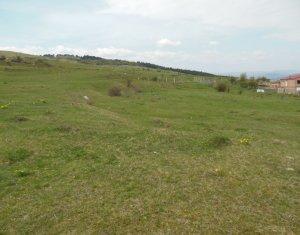Teren intravilan 558 mp, ideal pentru casa individuala, zona Polus
