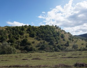 Land for sale in Tauti