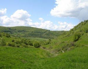 Vanzare teren 1870 mp situat in sat Tauti
