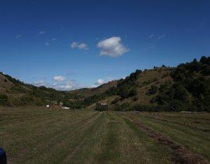 Terrain à vendre dans Tauti