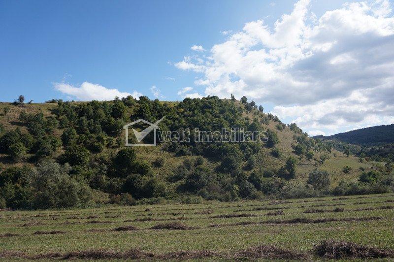 Vanzare teren 1962 mp situat in sat Tauti