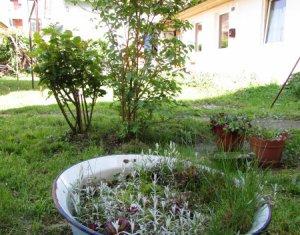 Apartment 1 rooms for sale in Cluj-napoca, zone Centru
