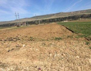 Vanzare teren intravilan 8400 mp, zona barajului Floresti
