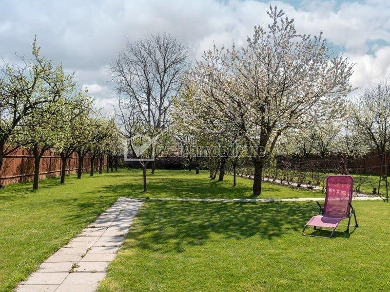 Vila moderna, zona linistita, gazon verde,  pomi fructiferi, drum privat